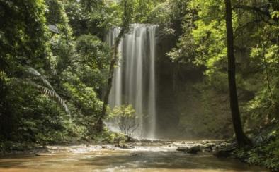 камбоджа, водопады и джунгли